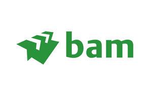 bam-300x193