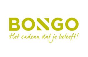 bongo-300x193