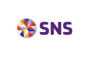 sns-1-300x193